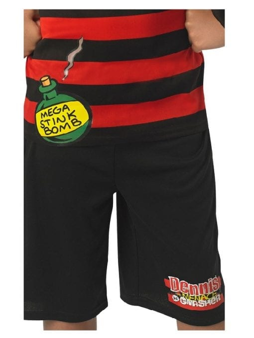 Dennis the Menace Tween 2